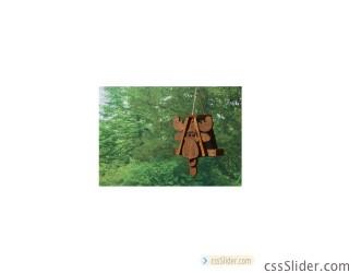 cabfm_moose_birdfeeder