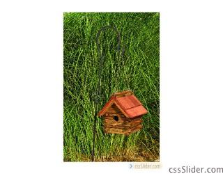 lcbhcr_log_cabin_bh_with_cedar_roof