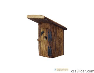 robh_rustic_outhouse_birdhouse